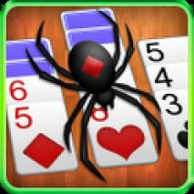 Spider Solitaire dvd cover