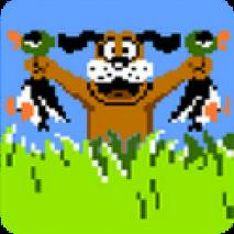 Duck Hunt dvd cover