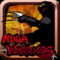 Ninja Warriors dvd cover
