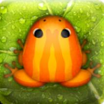 Pocket Frogs Cover