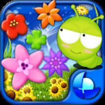 Bloom-PoP Cover