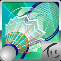 Badminton 3D Cover
