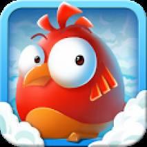 Crazy bird dvd cover
