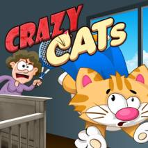 Crazy Cats dvd cover