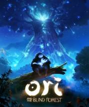 Ori and the Blind Forest dvd cover