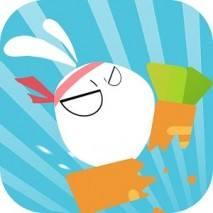 Kungfu Rabbit Dash dvd cover