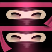 The Last Ninja Twins dvd cover