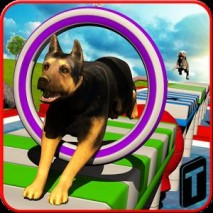 Stunt Dog Simulator 3D dvd cover