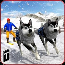 Sled Dog Racing 2017 Cover