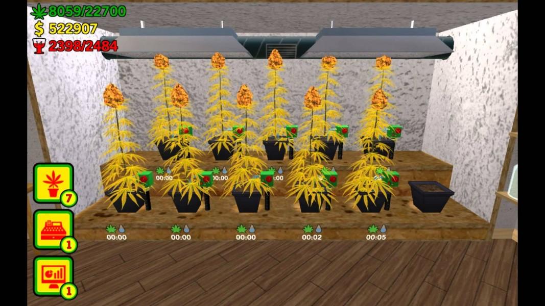 Конопли игра выращивание i марихуаны лигалайз на кубе