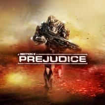 Section 8: Prejudice dvd cover
