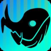 Beach Whale dvd cover