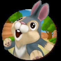 Bunny Run dvd cover