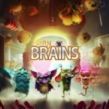 Tiny Brains dvd cover