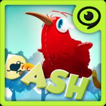 Kiwi Dash dvd cover