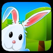 Bunny Maze dvd cover