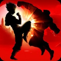 Shadow Battle Cover
