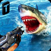 Shark Sniping 2016 Cover