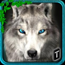 Ultimate Wolf Adventure 3D dvd cover