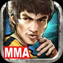 Kung Fu All-Star: MMA Fight dvd cover